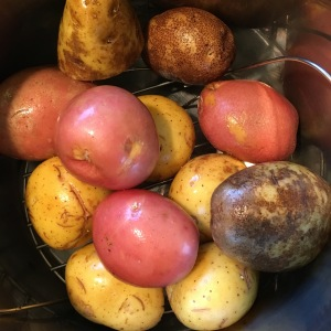 instant-pot-potatoes-water