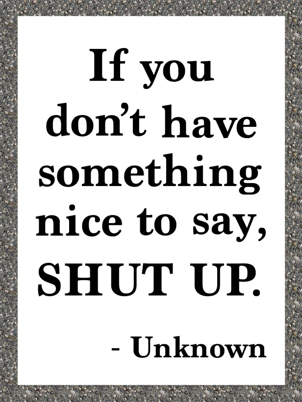 If you don't have something nice to say SHUT UP