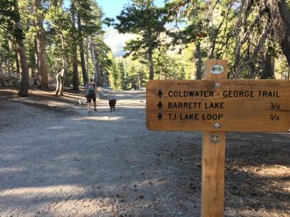 Lake George Campsite 20173736